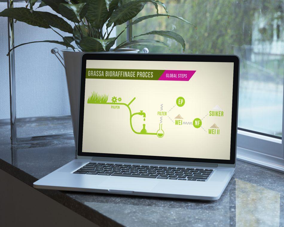 Infographic Grassa, ontworpen door Kaspcreations